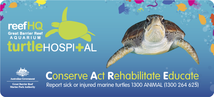 Turtle Hospital Logo, Image of Torres and Conserve, Act, Rehabilitate, Educate
