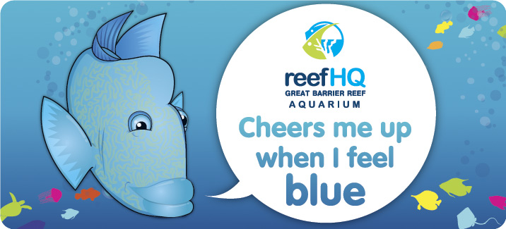Image of a cartoon Maori Wrasse saying Reef HQ Aquarium cheers me up when I feel blue