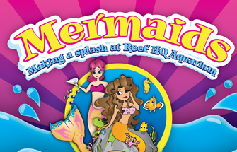 Images of Mermaids at Reef HQ Aquarium, splashing by for a
